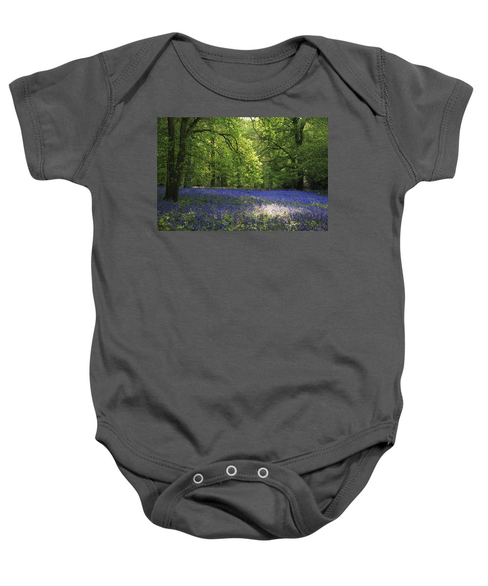 Bluebells Baby Onesie featuring the photograph Bluebells by Phil Crean