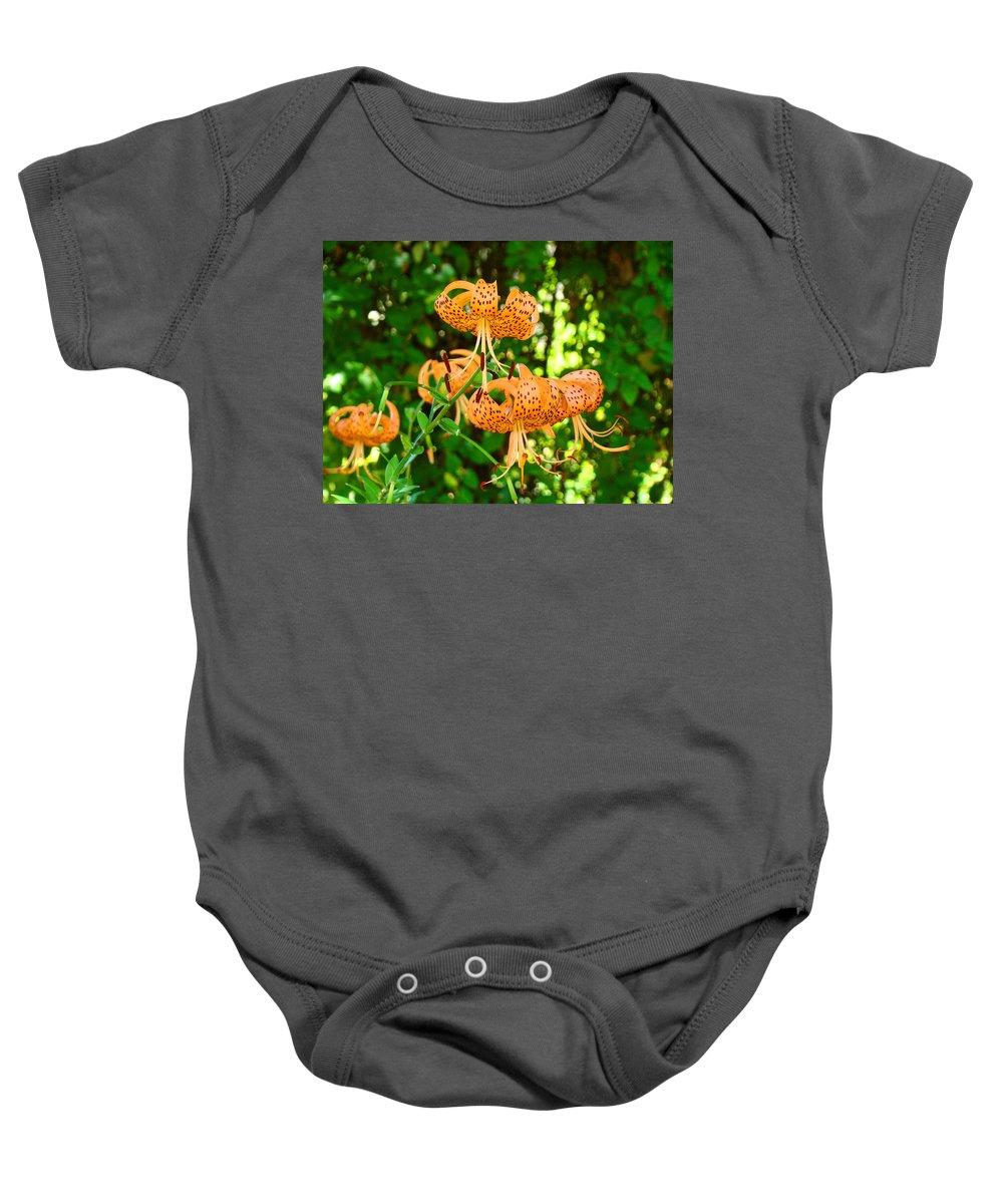 Lilies Baby Onesie featuring the photograph Botanical Master Gardens Art Prints Orange Tiger Lilies Baslee Troutman by Baslee Troutman