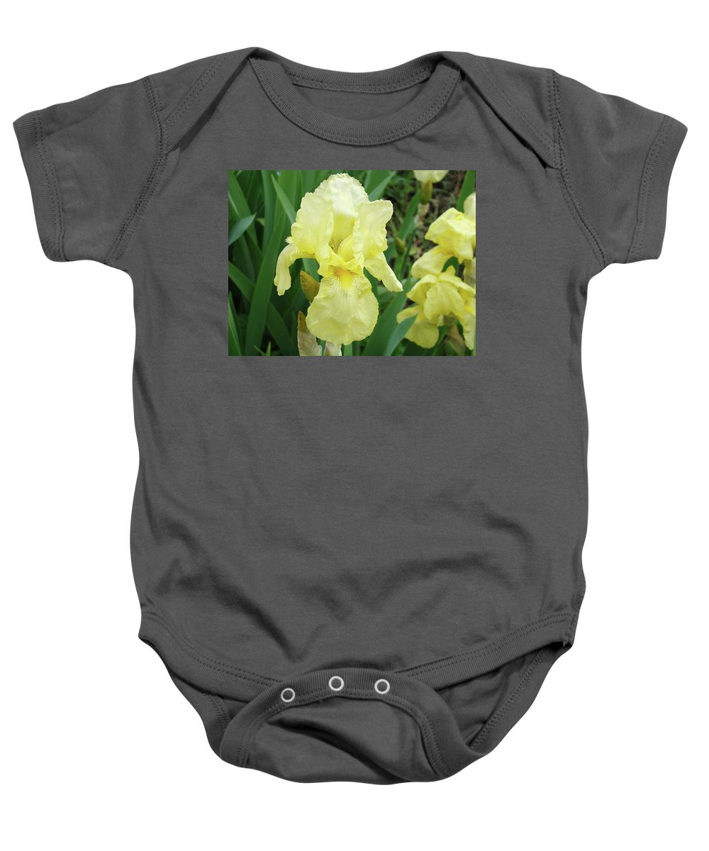 Iris Baby Onesie featuring the photograph Botanical Yellow Iris Flower Summer Floral Art Baslee Troutman by Baslee Troutman