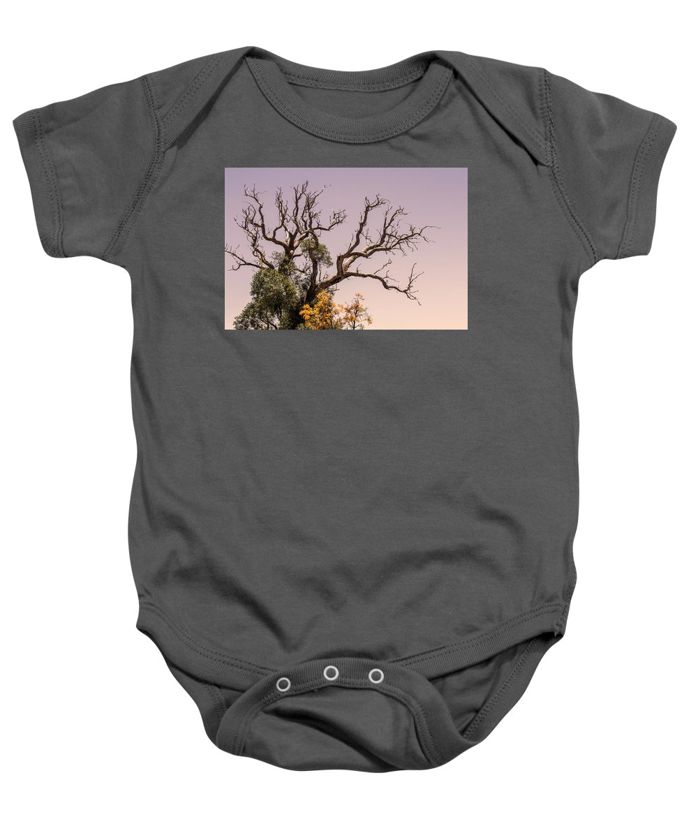 Tree Baby Onesie featuring the photograph Branching Out by Tania Read