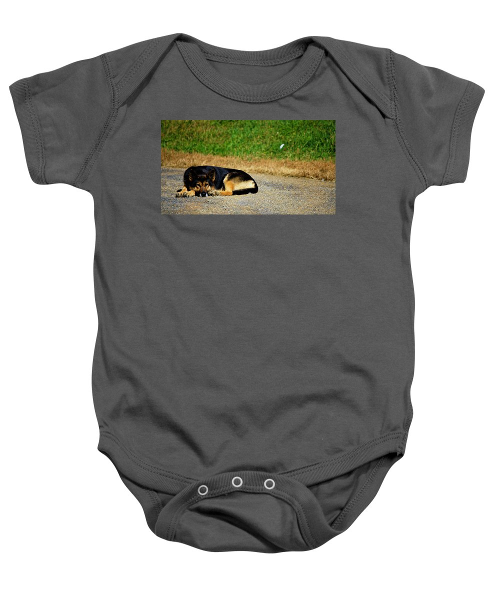 Breaktime Baby Onesie featuring the photograph Breaktime by Teresa Mucha