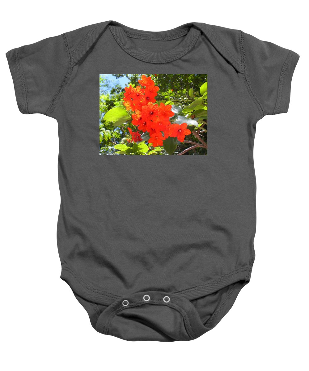 Flowers Baby Onesie featuring the photograph Brilliant Blossoms by Maria Bonnier-Perez
