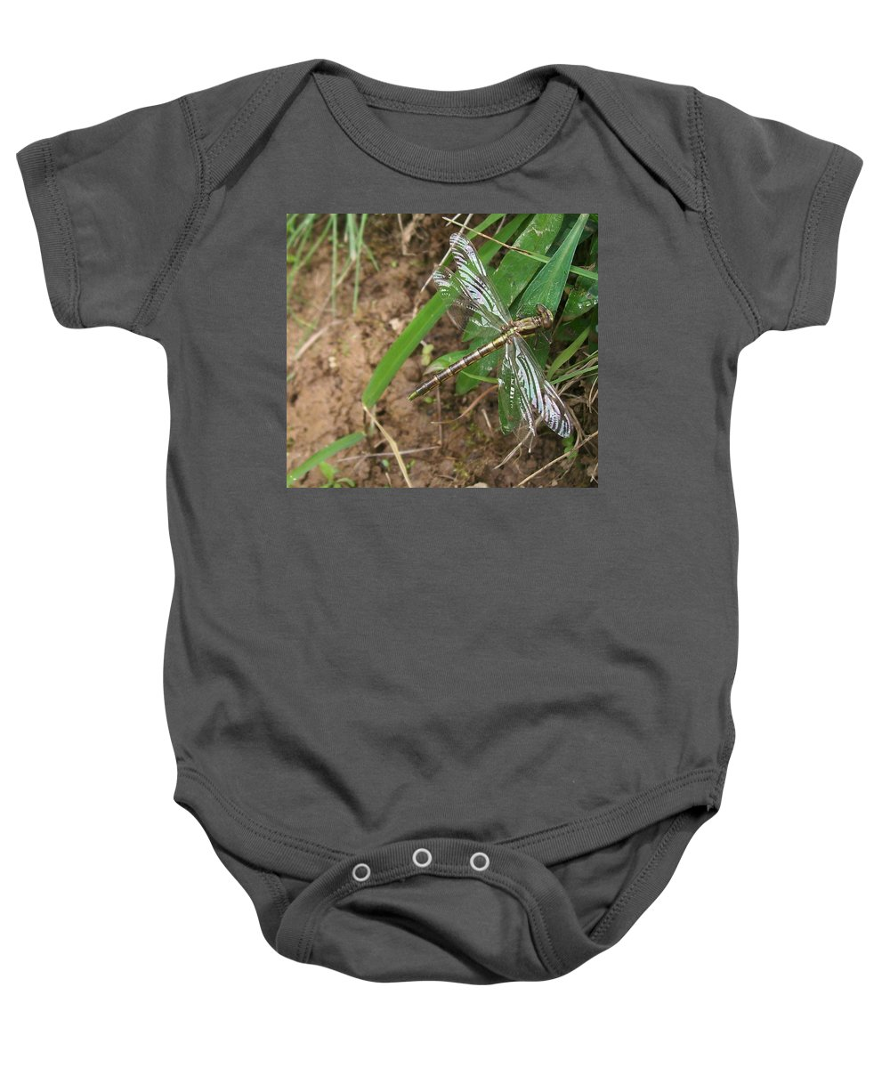 Dragonfly Baby Onesie featuring the photograph Brown Dragon by Sara Raber