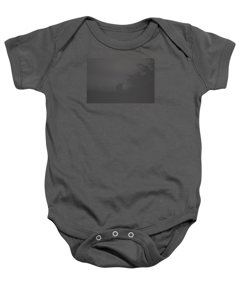 Deer Baby Onesie featuring the photograph Buck Out Of The Mist by Tammy Miller