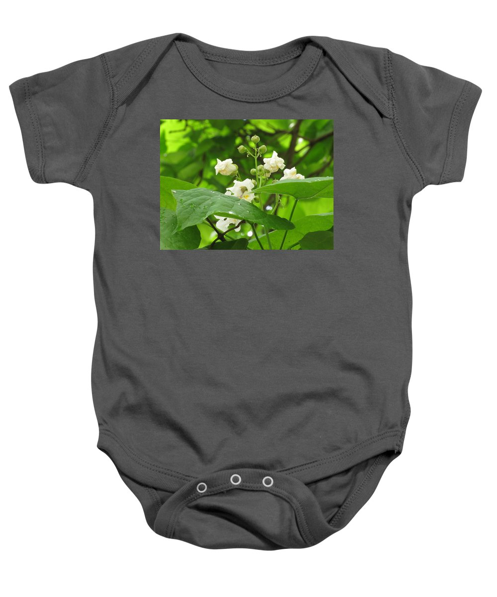 Flowers Baby Onesie featuring the photograph Budding by Carol McGinn