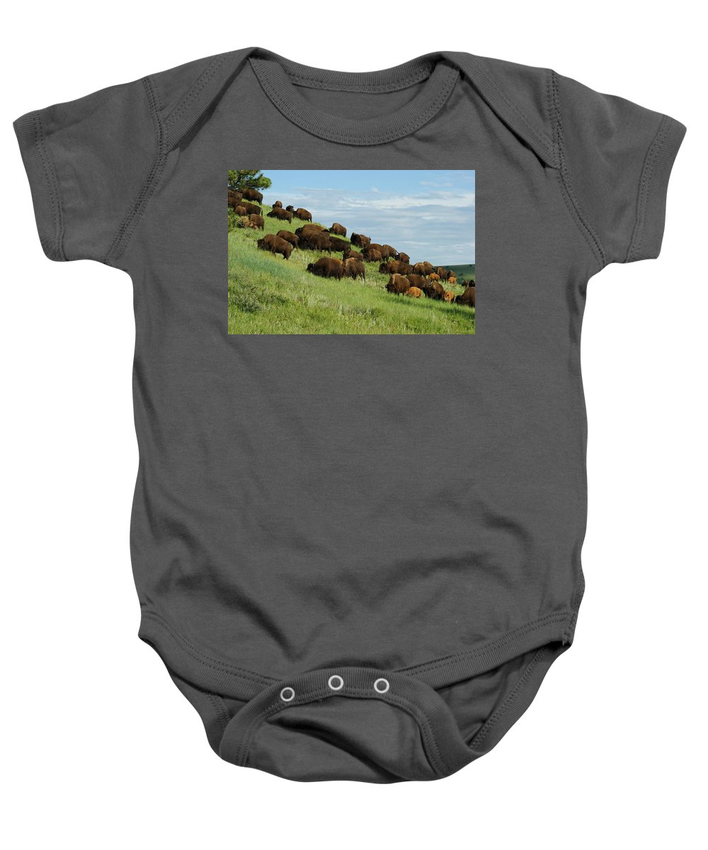 Animals Baby Onesie featuring the photograph Buffalo Herd by Ernie Echols