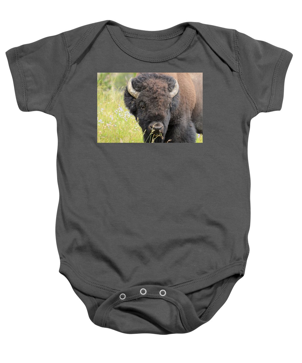 yellowstone National Park Baby Onesie featuring the photograph Buffalo In Flowers by Wendy Fox