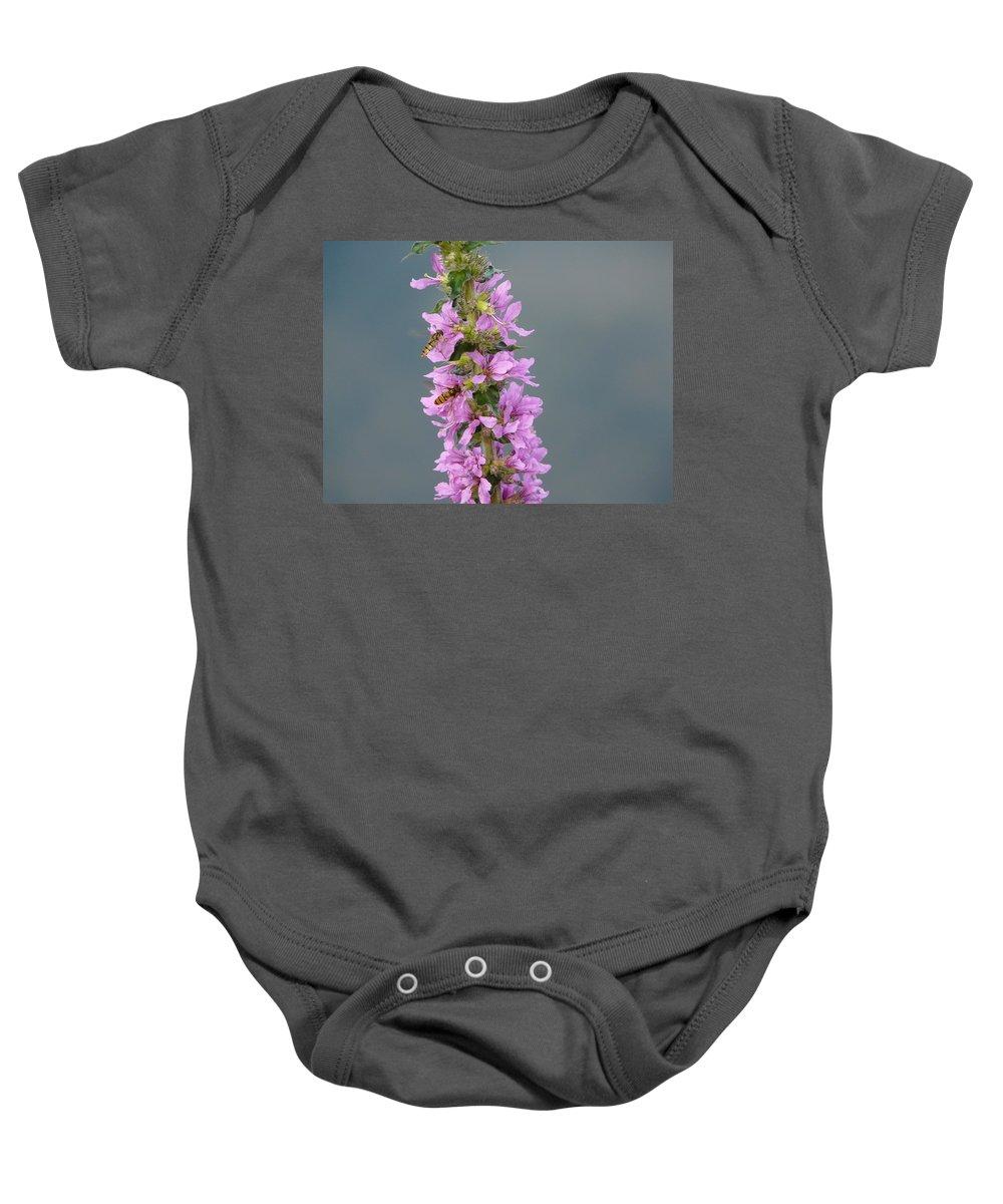Flower Baby Onesie featuring the photograph Busy Flower by Valerie Ornstein