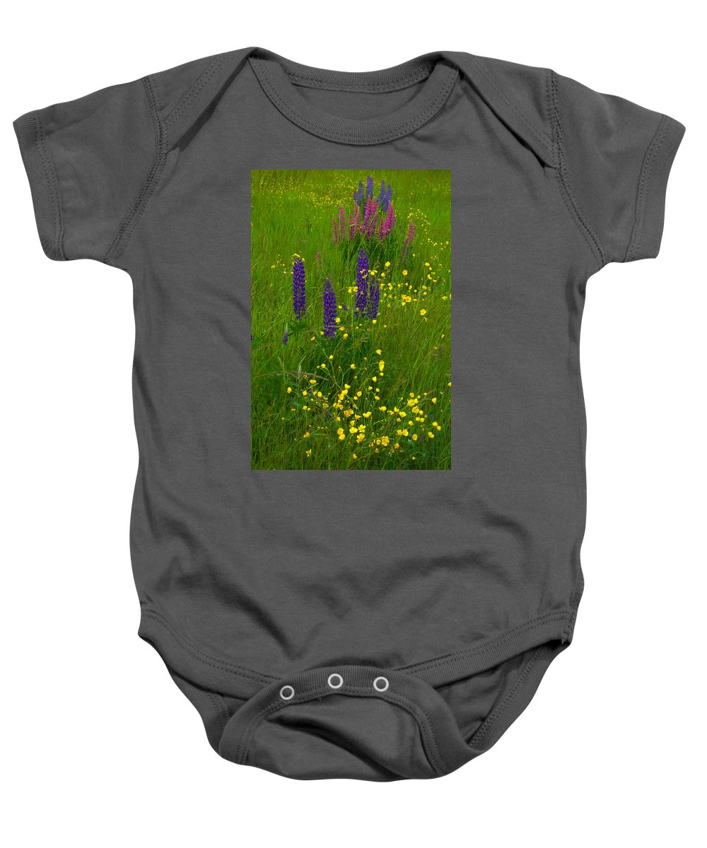 Wildflowers Baby Onesie featuring the photograph Buttercups And Lupines by Irwin Barrett