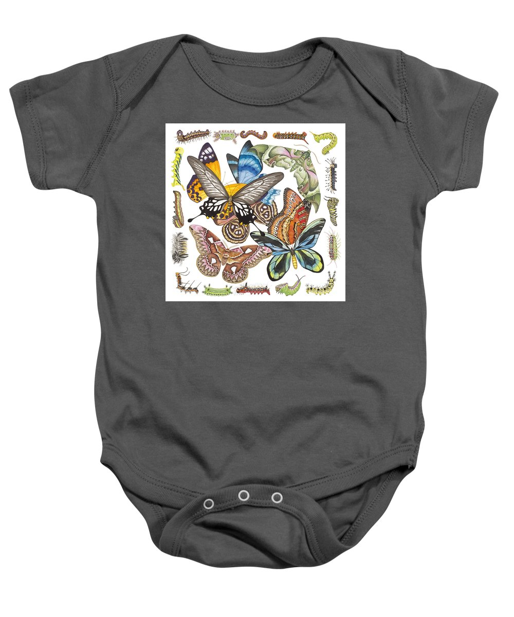 Butterflies Baby Onesie featuring the painting Butterflies Moths Caterpillars by Lucy Arnold