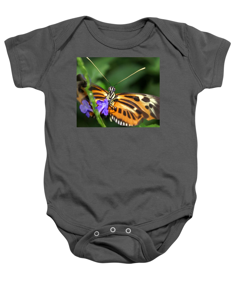 Butterfly Baby Onesie featuring the photograph Butterfly 2 Eucides Isabella by Heather Coen