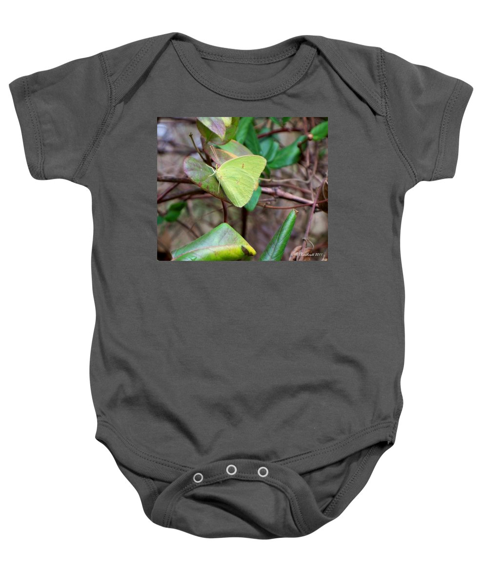 Butterfly Baby Onesie featuring the photograph Butterfly Camouflage by Betty Northcutt