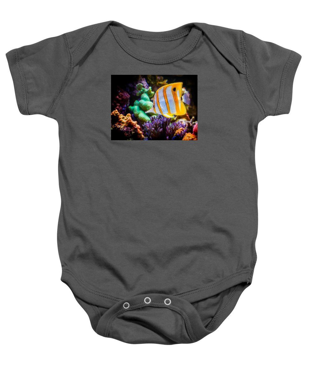 Animals Baby Onesie featuring the photograph Butterfly Of The Sea by Rikk Flohr