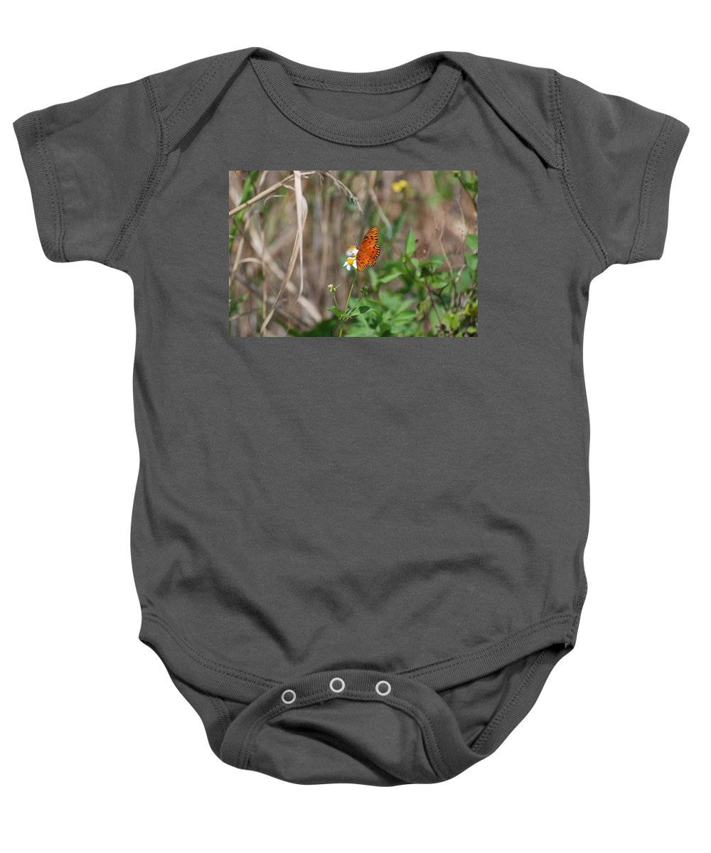 Nature Baby Onesie featuring the photograph Butterfly On Flower by Rob Hans