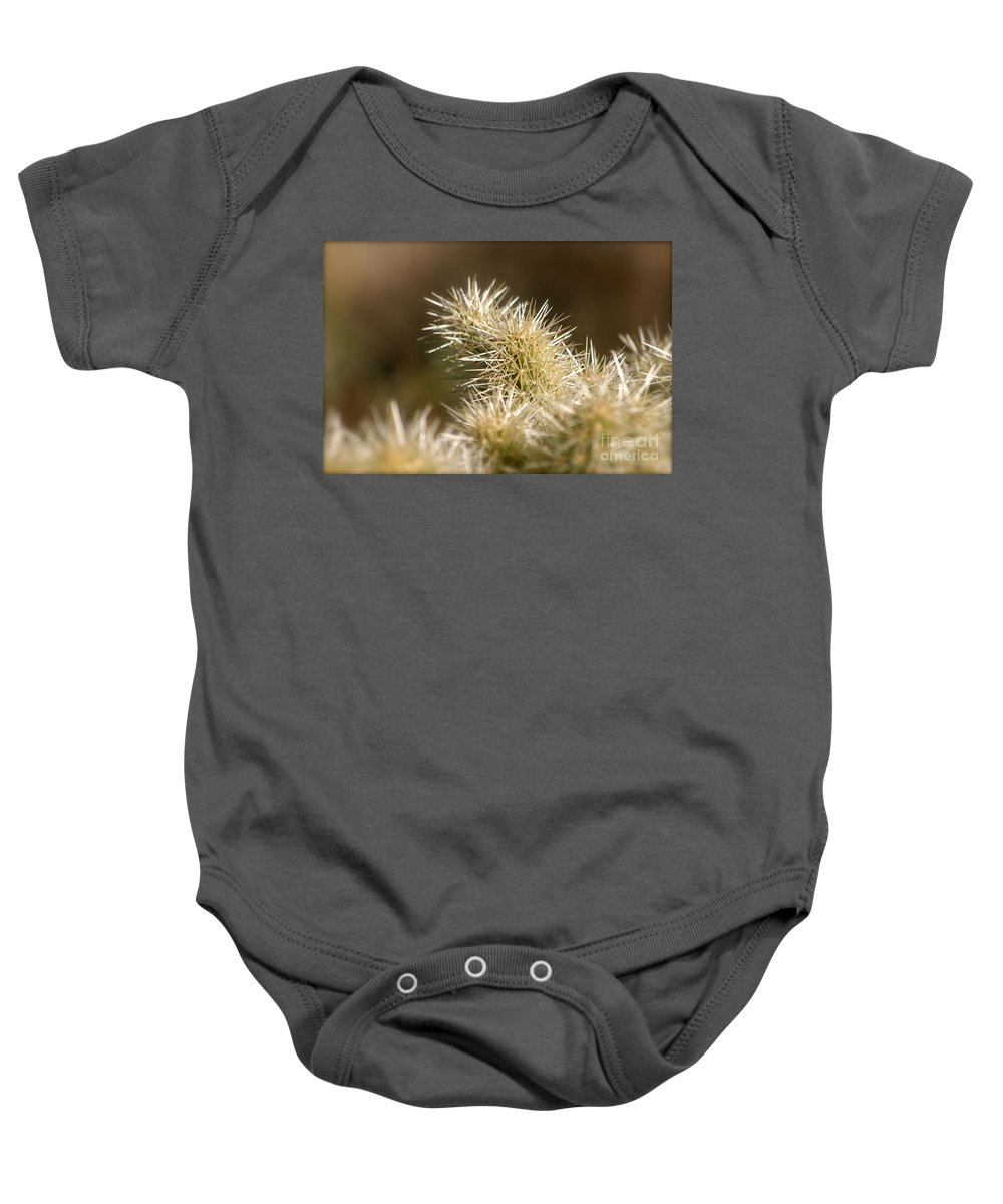 Cactus Baby Onesie featuring the photograph Cacti by Nadine Rippelmeyer