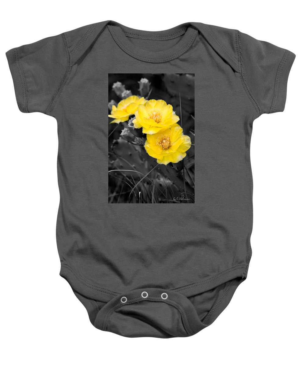 Cactus Baby Onesie featuring the photograph Cactus Blossom by Christopher Holmes