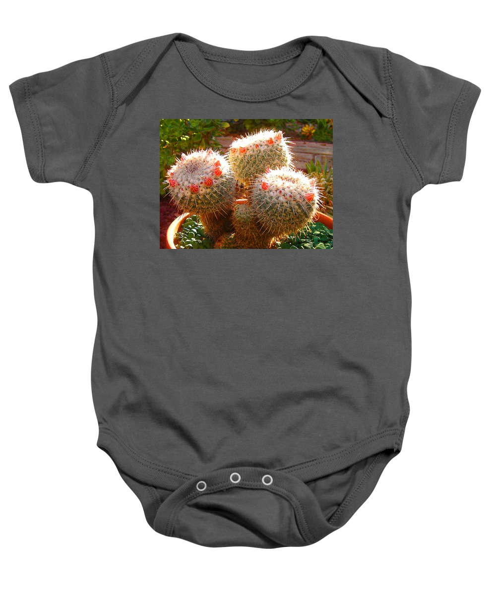 Landscape Baby Onesie featuring the photograph Cactus Buds by Amy Vangsgard
