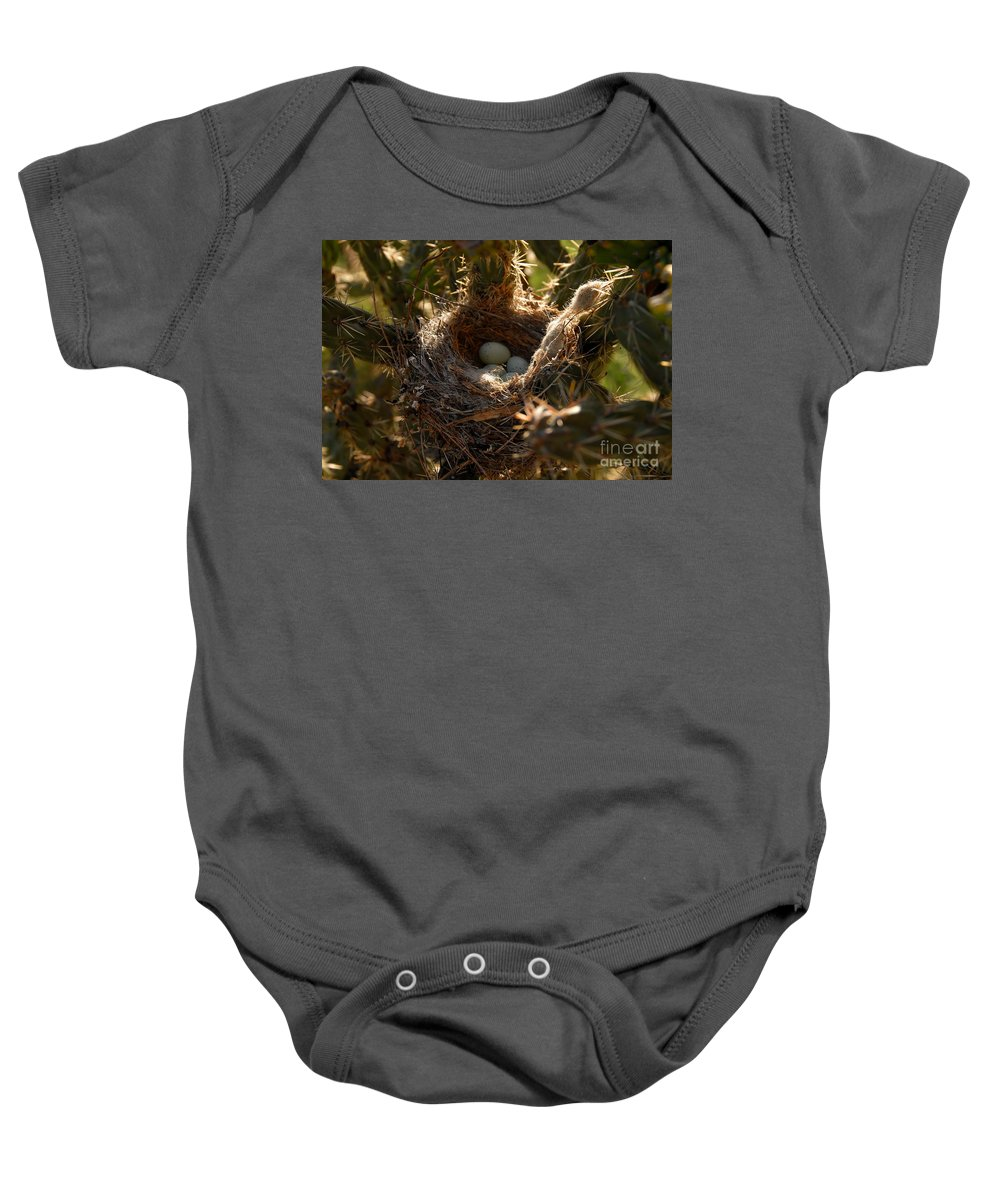 Cactus Baby Onesie featuring the photograph Cactus Nest by David Lee Thompson