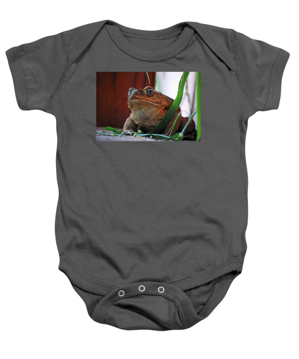 Cain Toad Baby Onesie featuring the photograph Cain Toad by Robert Meanor