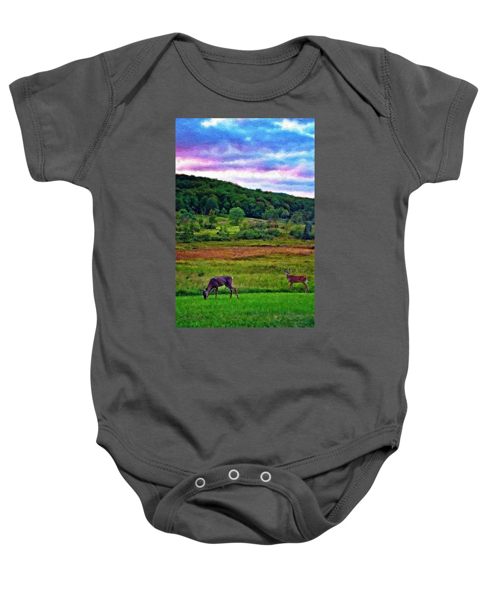 West Virginia Baby Onesie featuring the photograph Canaan Valley Evening Impasto by Steve Harrington