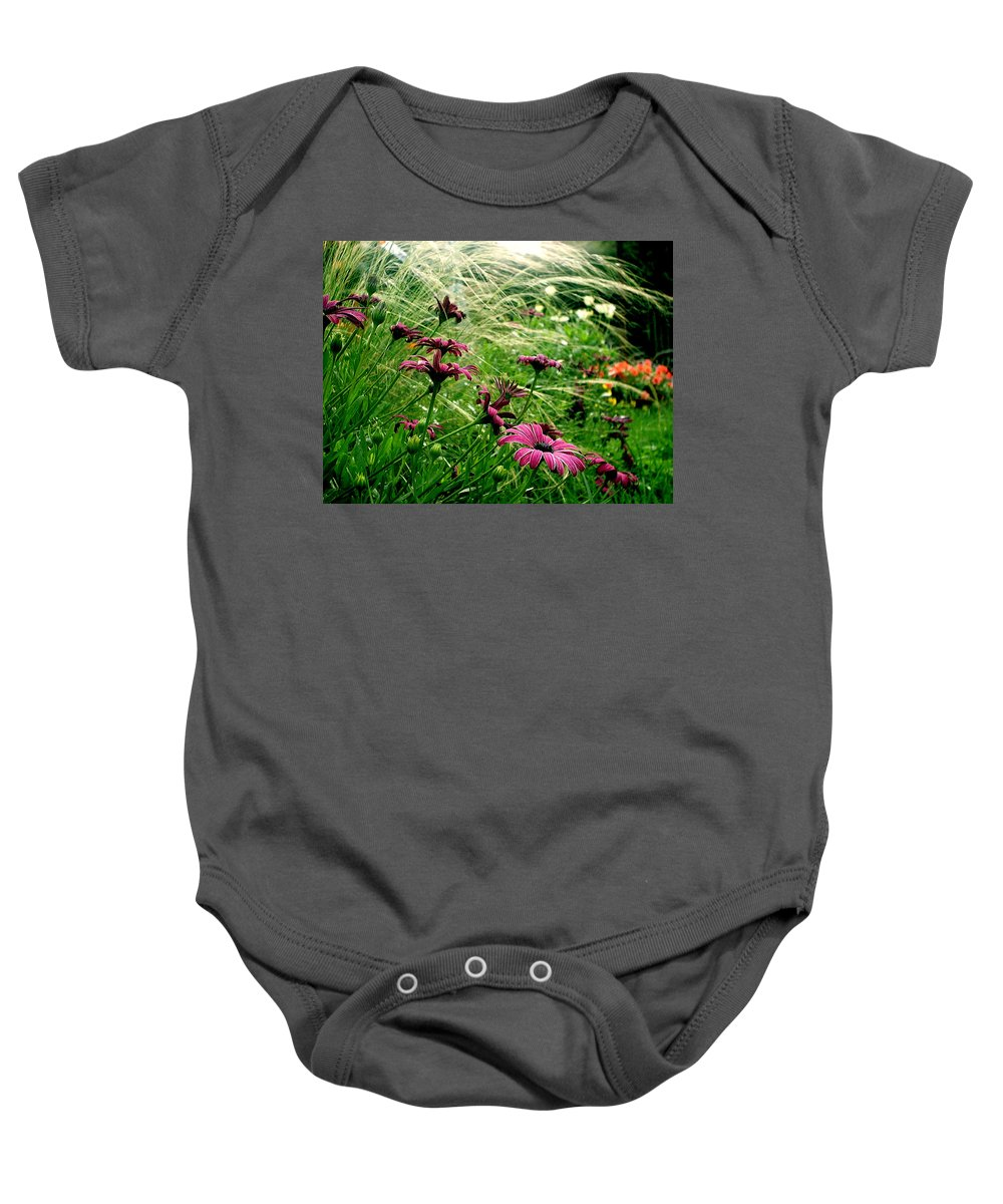 Flora Baby Onesie featuring the photograph Cape Daisies And Angel Hair by Susan Baker