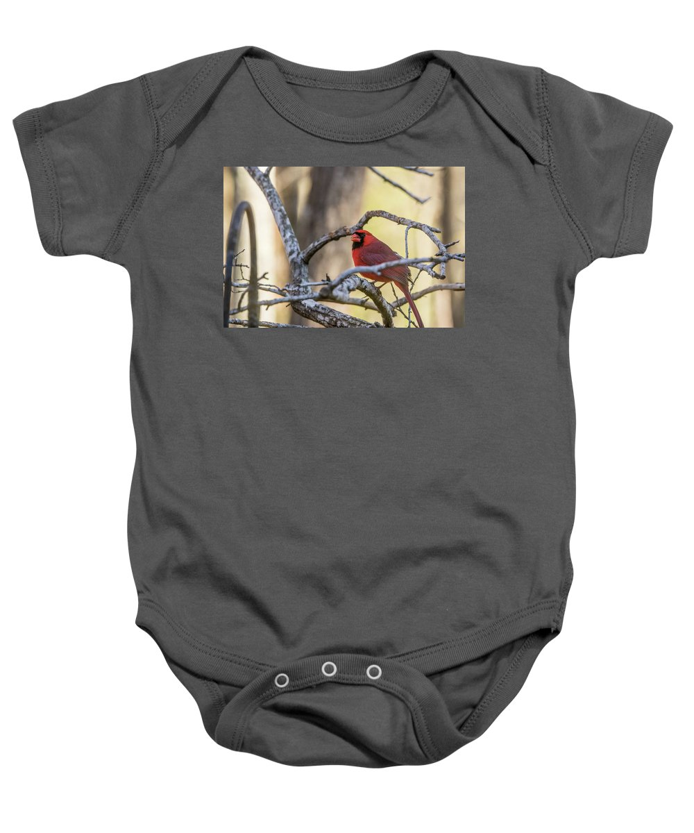 Among Baby Onesie featuring the photograph Cardinal Among The Branches by Douglas Barnett