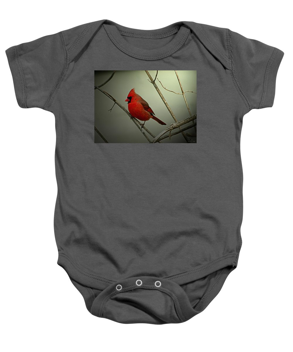 Jenny Gandert Baby Onesie featuring the photograph Cardinal And The Setting Sun by Jenny Gandert