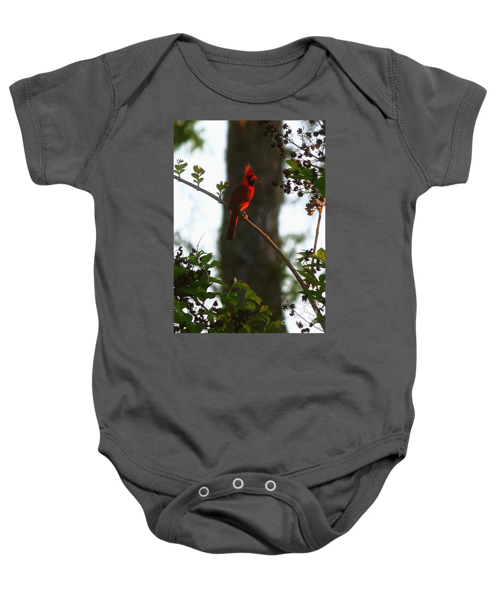 Cardinal Baby Onesie featuring the photograph Cardinal In The Crepe Myrtle by Carol Groenen