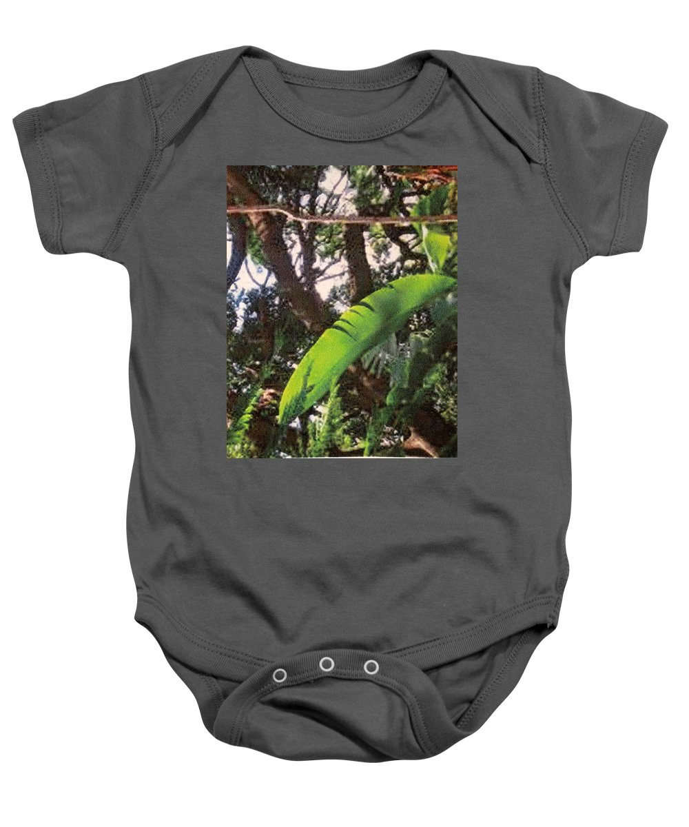 Caribbean Baby Onesie featuring the photograph Caribbean Banana Leaf by Ian MacDonald