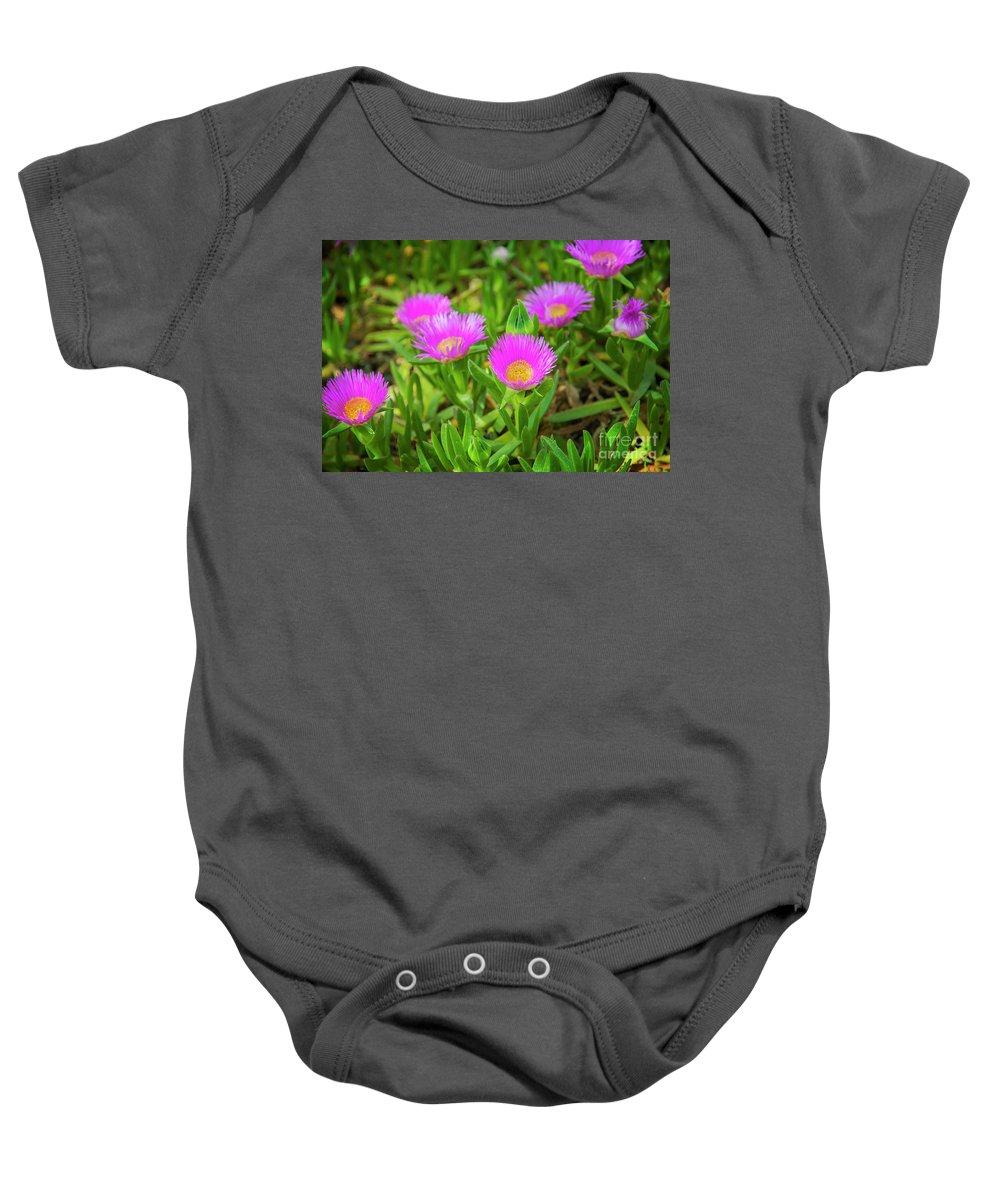 Edulis Baby Onesie featuring the photograph Carpobrotus Edulis Pink Ice Plant by Sophie McAulay