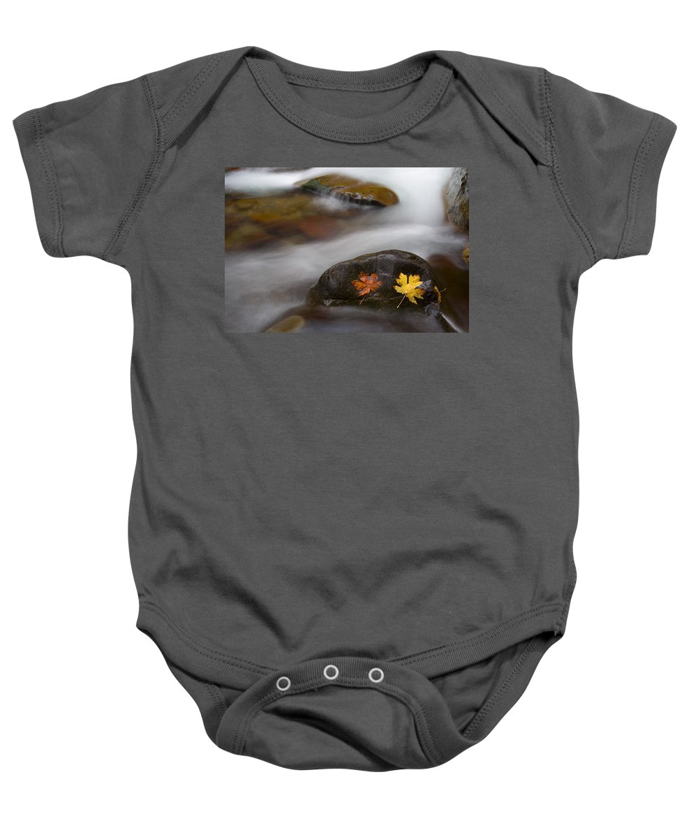 Leaves Baby Onesie featuring the photograph Castaways by Mike Dawson