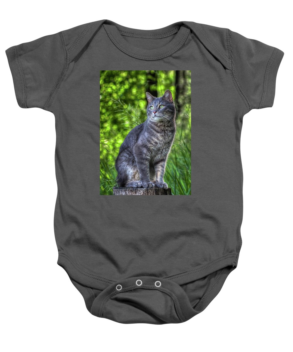 Cat Baby Onesie featuring the photograph Cat On A Post by Chad Rowe