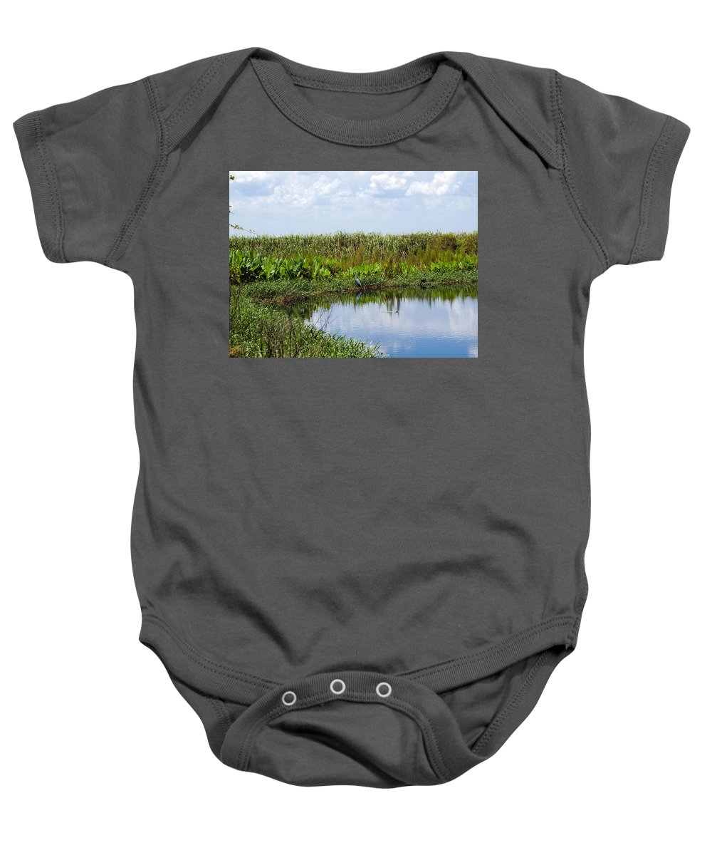 Florida; River; St; Johns; Saint; John; Flow; Flows; North; South D;; Flowing; Current; Back Baby Onesie featuring the photograph Central Florida Backwater by Allan Hughes