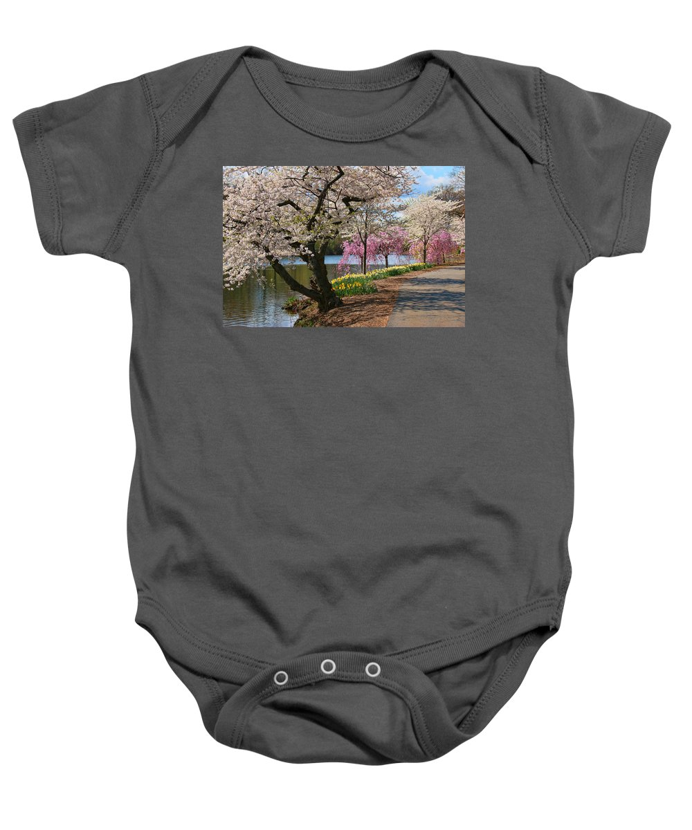 Cherry Blossoms Baby Onesie featuring the photograph Cherry Blossom Trees Of Branch Brook Park 17 by Allen Beatty