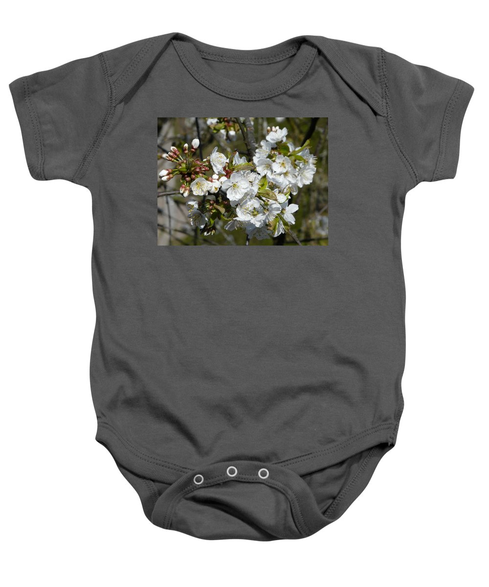 Cherry Baby Onesie featuring the photograph Cherry Blossom by Valerie Ornstein