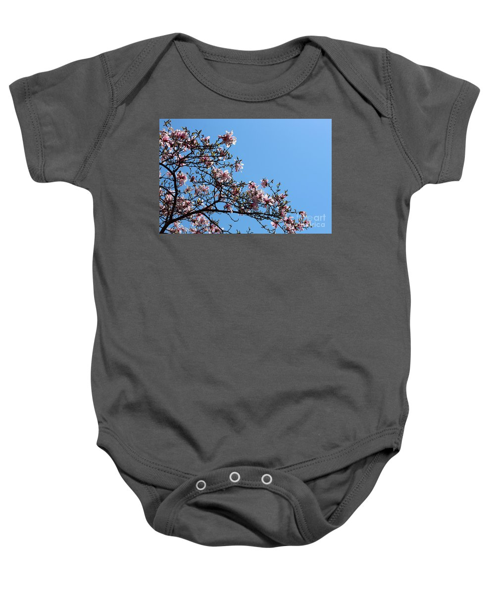 Background Baby Onesie featuring the pyrography Cherry Blossoms by Douglas Milligan
