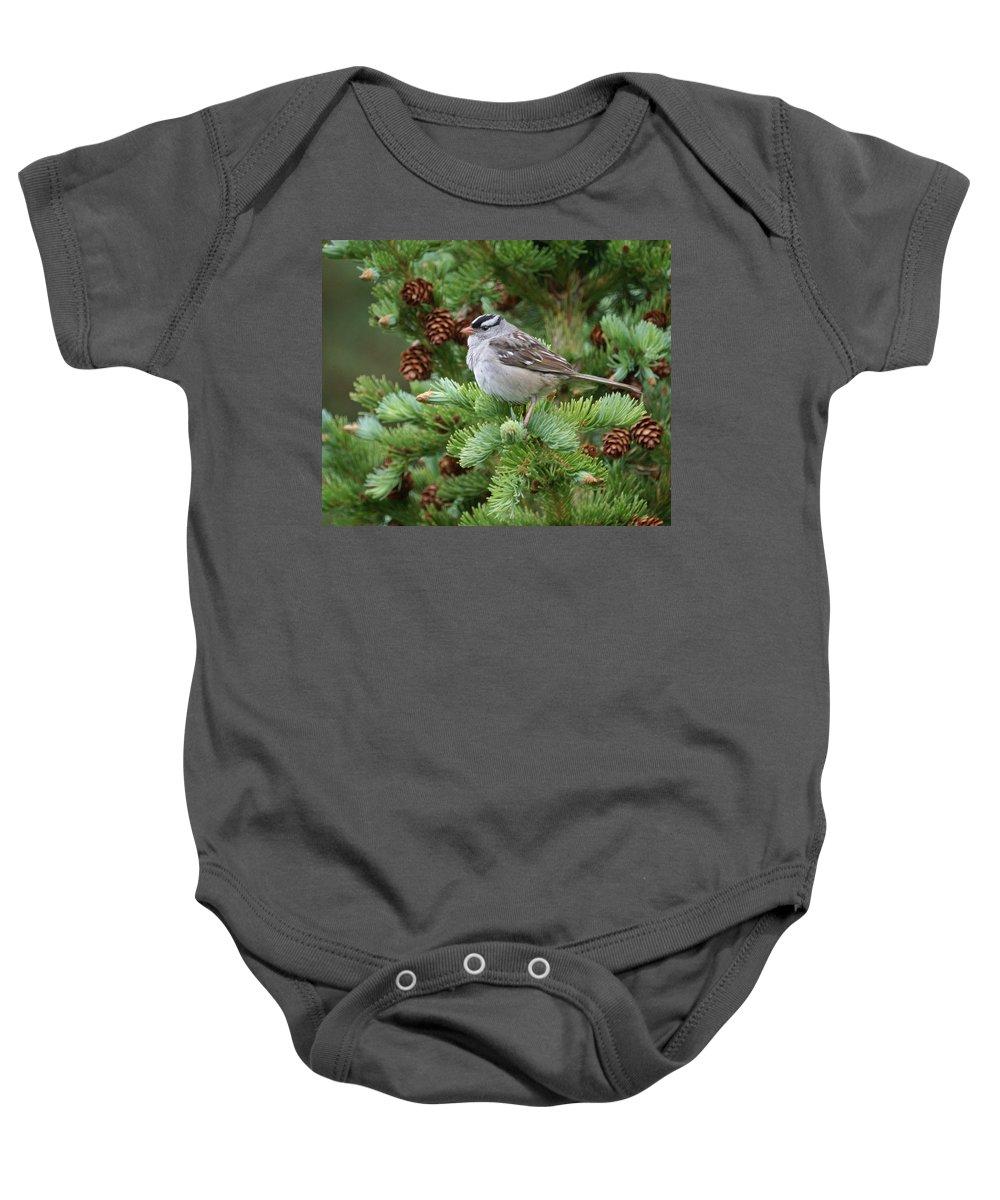 Chickadee Baby Onesie featuring the photograph Chickadee by Heather Coen