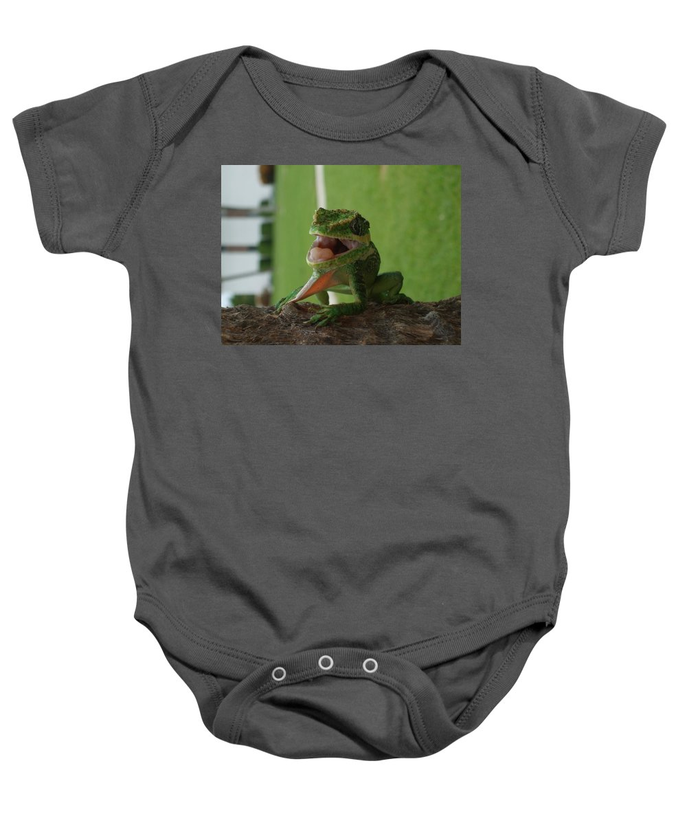 Iguana Baby Onesie featuring the photograph Chilling On Wood by Rob Hans