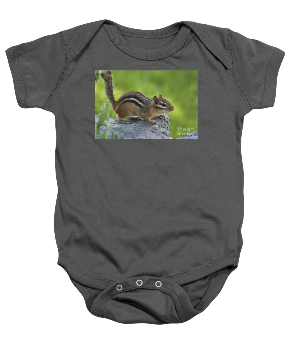 Nature Baby Onesie featuring the photograph Chippy On The Move by Deborah Benoit