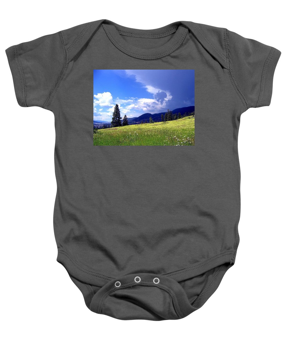 Cinquefoil Baby Onesie featuring the photograph Cinquefoil Blossoms by Will Borden