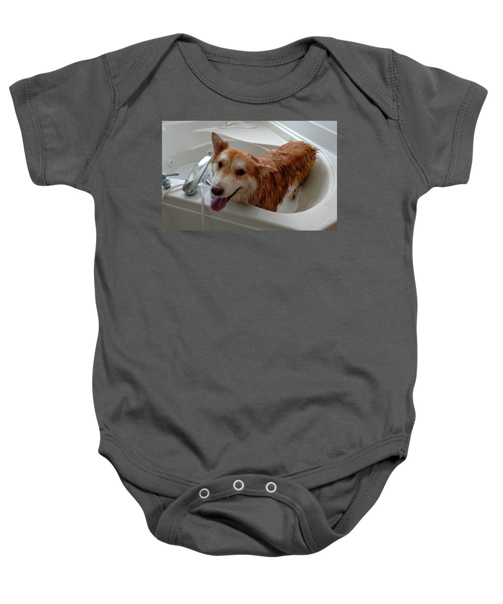Baby Onesie featuring the photograph Clean Doggo by Brad Nellis