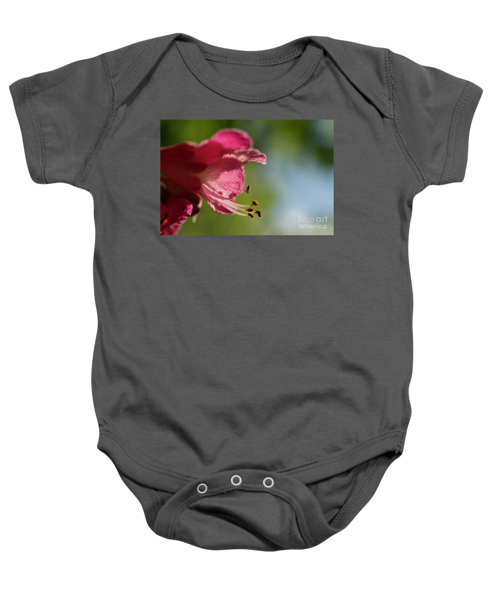 Purple Baby Onesie featuring the photograph Red Horsechestnut Flower by Michelle Himes