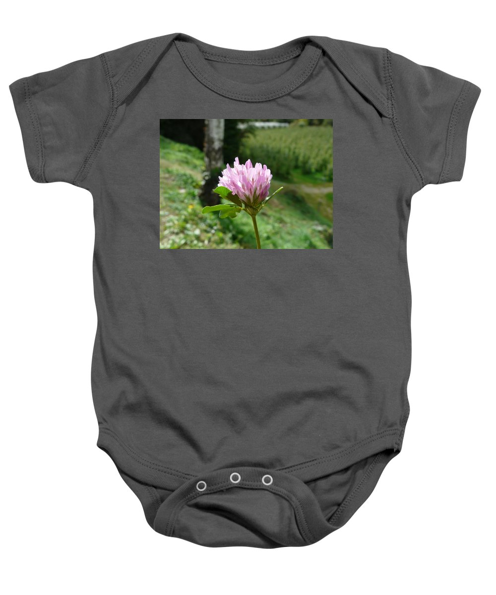 Red Baby Onesie featuring the photograph Clover 1 by Valerie Ornstein