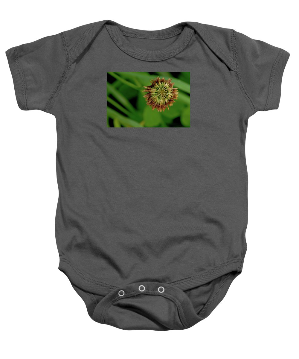 Clover Baby Onesie featuring the photograph Clover Past Due by Grant Groberg