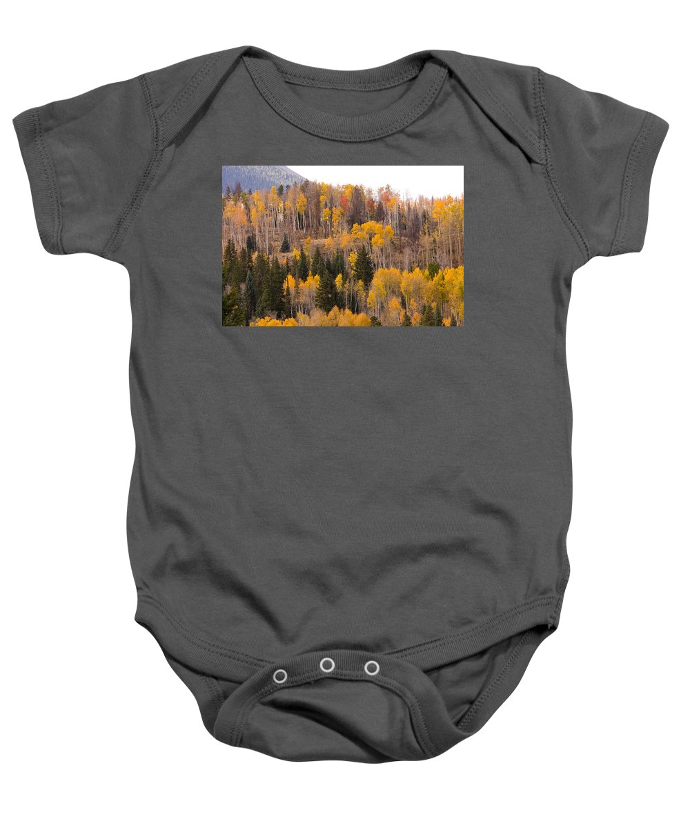 Trees Baby Onesie featuring the photograph Colorado Fall Foliage by James BO Insogna
