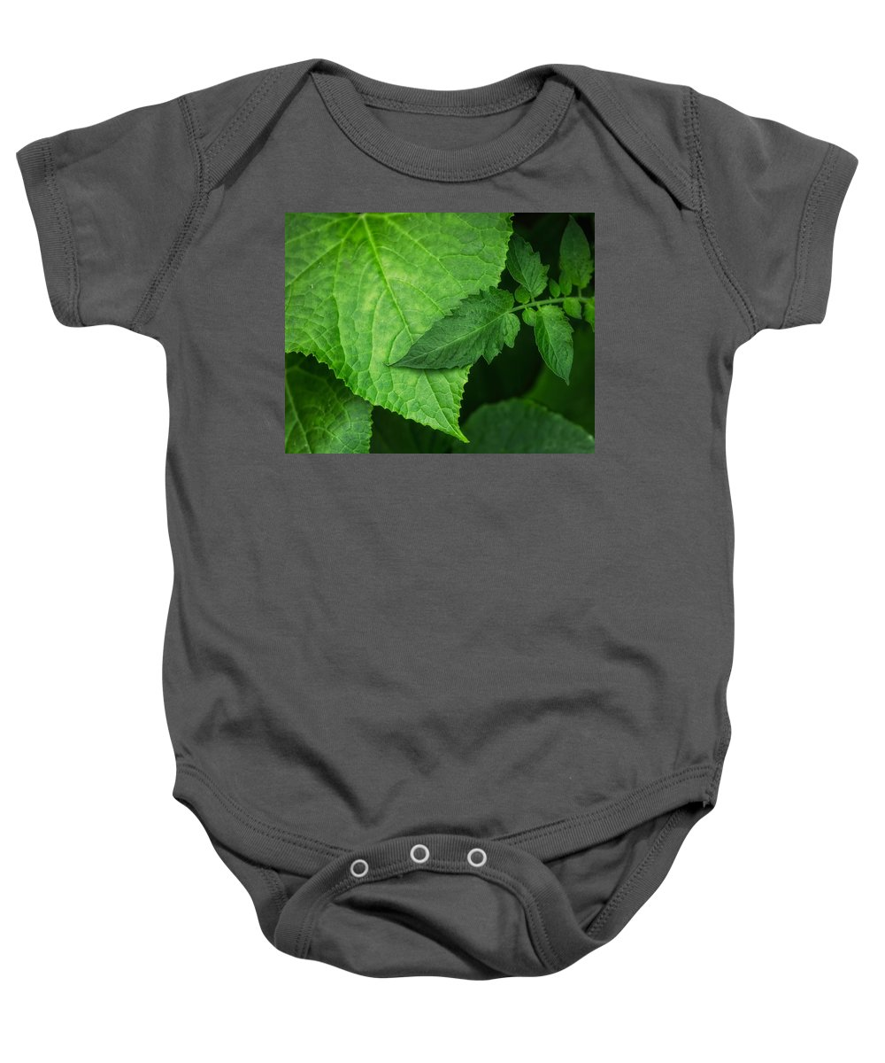 Cindy Archbell Baby Onesie featuring the photograph Comfort by Cindy Archbell