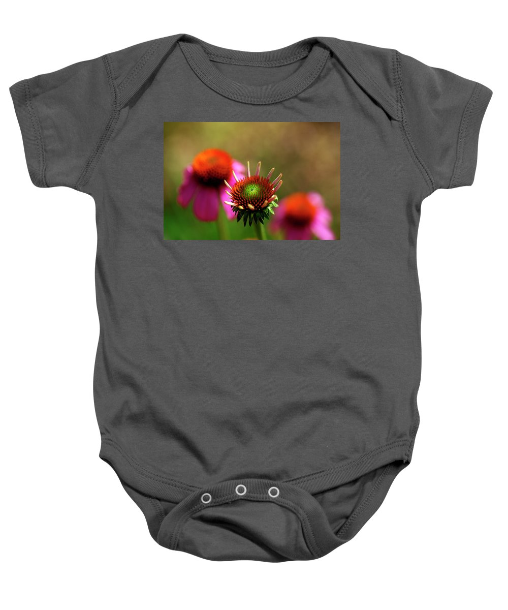 Purple Cone-flower Baby Onesie featuring the photograph Cone Flowers by Bill Morgenstern