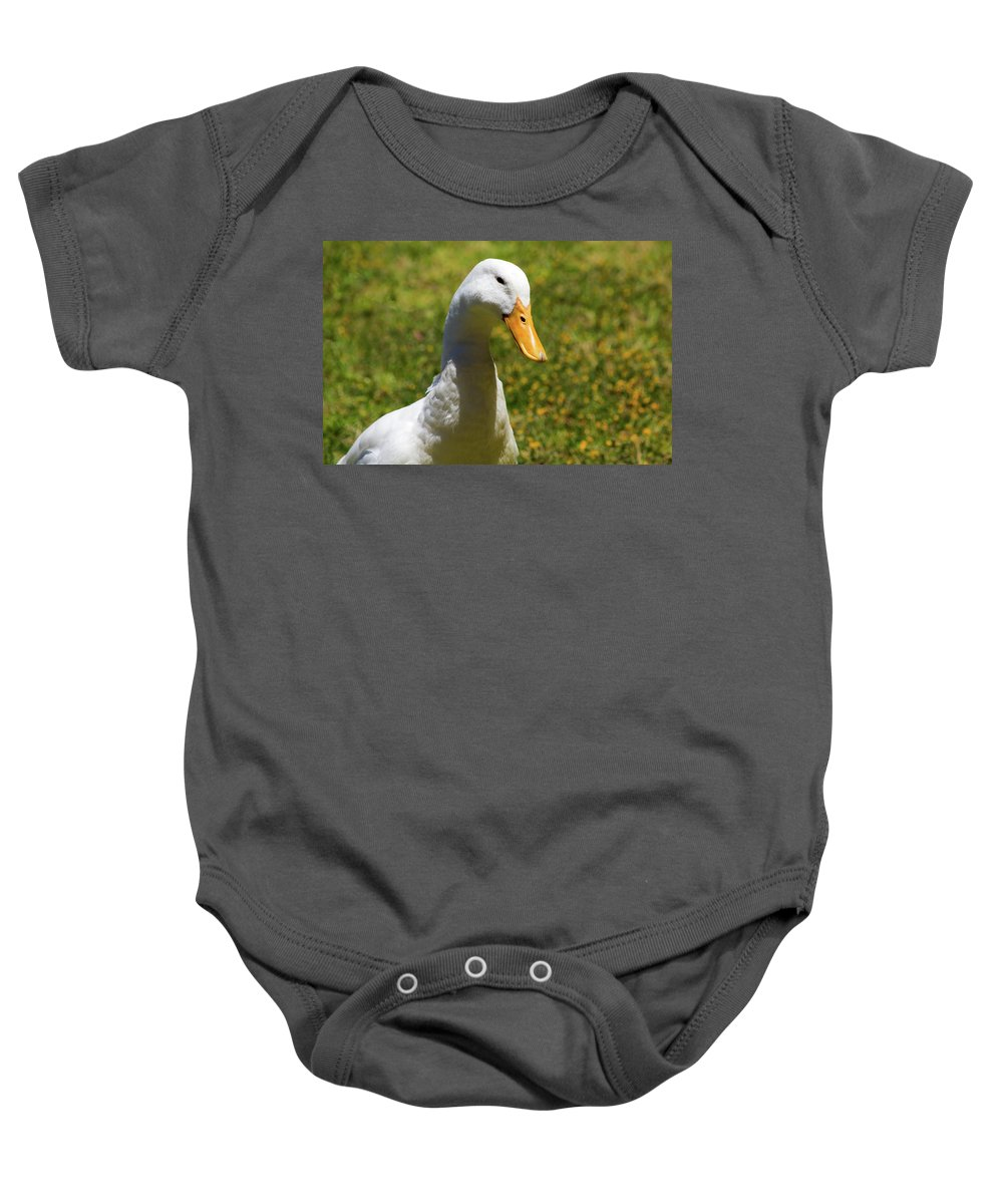 Duck Baby Onesie featuring the photograph Contentment by Tania Read