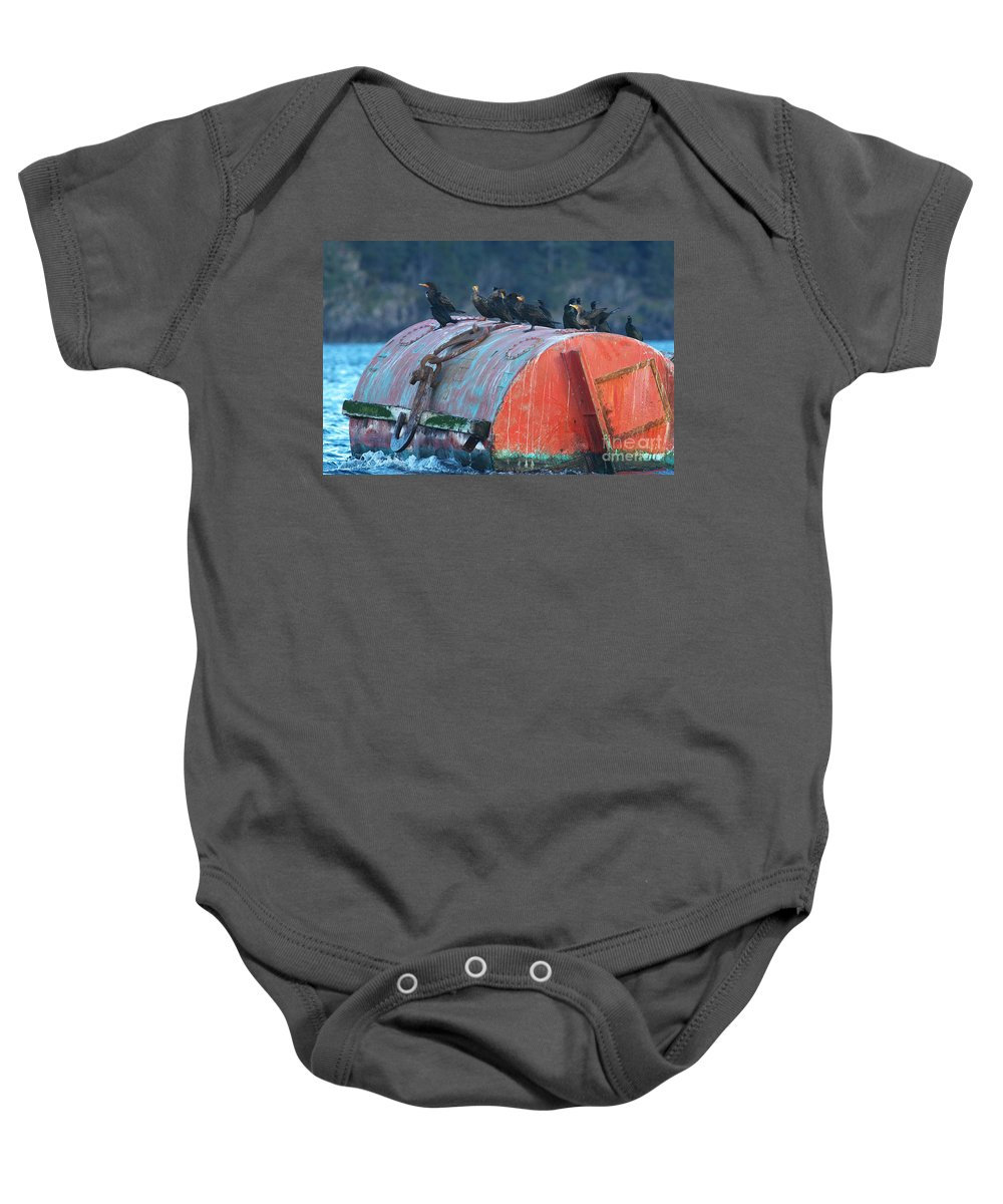 Cormorants Baby Onesie featuring the photograph Cormorants On A Barrel by Sharon Talson