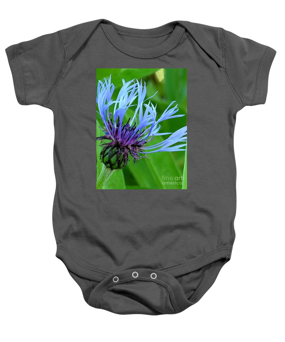 Blue Baby Onesie featuring the photograph Cornflower Centaurea Montana by Diane Greco-Lesser